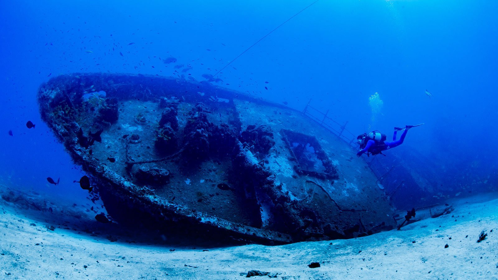 Scuba diving Kenya wreck