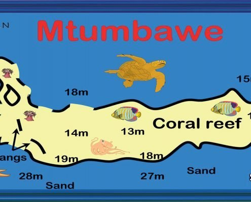 Kenya Top Dive Sites
